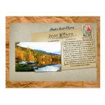 Alaska Bush Planes Postcard