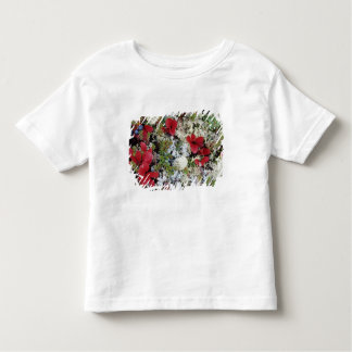 Alaska, Denali National Park, Arctic tundra is Toddler T-shirt