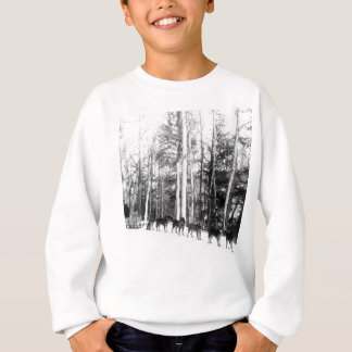 Alaska Dog Sledding Sweatshirt