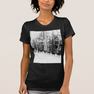 Alaska Dog Sledding T-Shirt