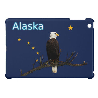 Alaska Eagle And Flag Case For The iPad Mini