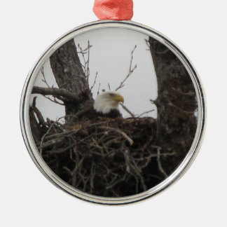 Alaska eagle ornament