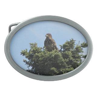 Alaska Eagles Hebilla Cinturon Oval