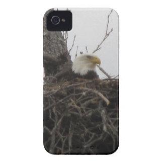 Alaska Eagles iPhone 4 Cover