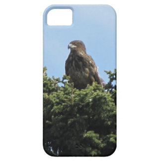 Alaska Eagles iPhone 5 Case-Mate Coberturas