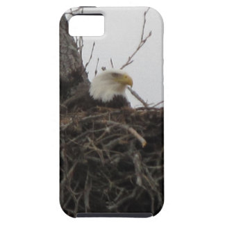 Alaska Eagles iPhone 5 Case-Mate Protector