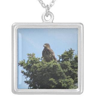 Alaska Eagles Pendiente
