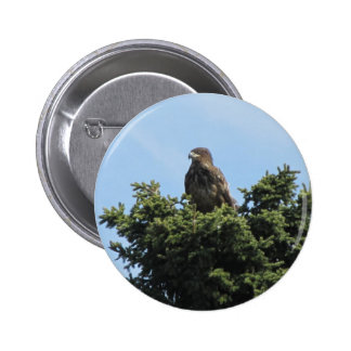 Alaska Eagles Pin