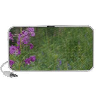 Alaska Fireweed wildflower Mini Speaker