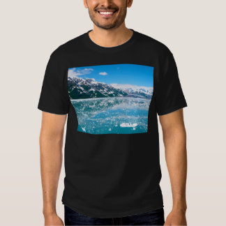 Alaska Glasier Remeras