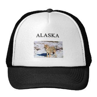 Alaska Gorros Bordados