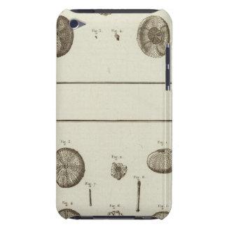 Alaska iPod Touch Case