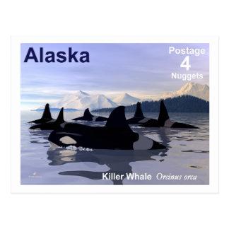 Alaska Killer Whales Stamp Postcard