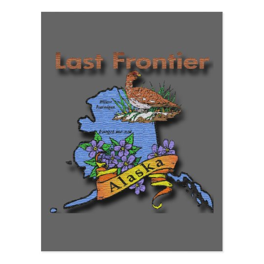 Alaska Last Frontier bird flower Postcard