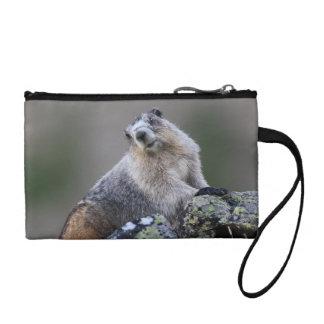 alaska marmot coin purses