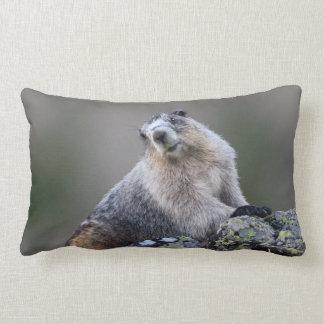 alaska marmot lumbar pillow