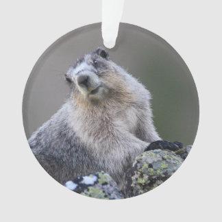 alaska marmot ornament