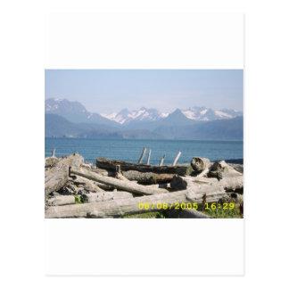 Alaska Mountain Scenery Postcard