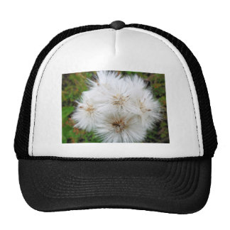 alaska p willow mesh hats