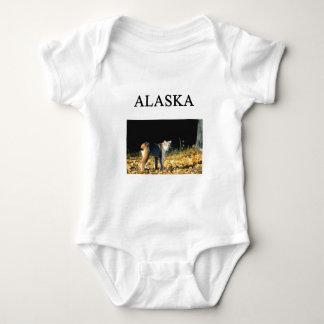 ALASKA PLAYERA