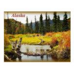 Alaska Postcards