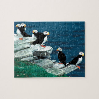 Alaska Puffins Feathered Colorful Birds Jigsaw Puzzle