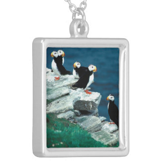 Alaska Puffins Feathered Colorful Birds Personalized Necklace
