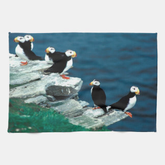 Alaska Puffins Feathered Colorful Birds Towel