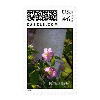 Alaska Rose 02 Stamps