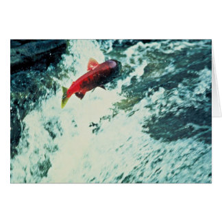 Alaska Salmon Card