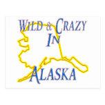 Alaska - salvaje y loca postal