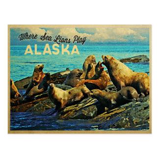 Alaska Sea Lions Postcard