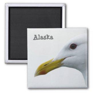 Alaska Seagull Magnet magnet