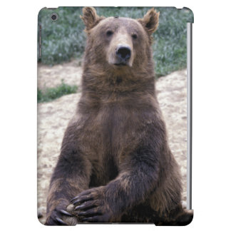 Alaska, southeast region Brown bear Ursus Cover For iPad Air