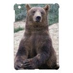 Alaska, southeast region Brown bear Ursus iPad Mini Cases