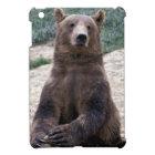 Alaska, southeast region Brown bear Ursus iPad Mini Cover
