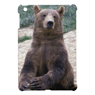 Alaska, southeast region Brown bear Ursus iPad Mini Cover