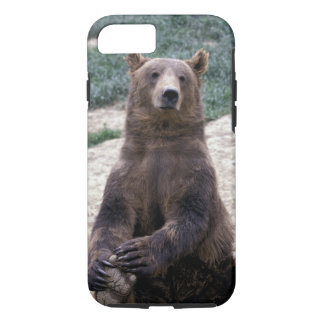 Alaska, southeast region Brown bear Ursus iPhone 7 Case