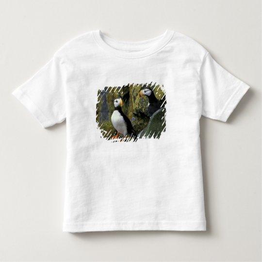Alaska, St. Paul Island, the Pribilofs, horned Toddler T-shirt
