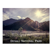 Alaska Sunbeams   Postcard
