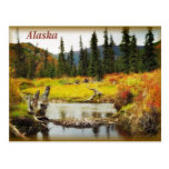 Alaska Tarjetas Postales