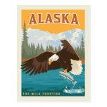 Alaska   The Wild Frontier - Eagle Postcard