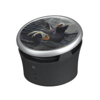 Alaska Tufted puffins Speaker