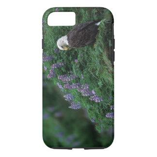 Alaska, Unalaska Island Bald Eagle among Nootka iPhone 7 Case