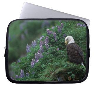 Alaska, Unalaska Island Bald Eagle among Nootka Laptop Sleeves