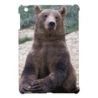 Alaska, Ursus suroriental del oso de Brown de la r