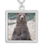 Alaska, Ursus suroriental del oso de Brown de la r Colgantes