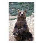 Alaska, Ursus suroriental del oso de Brown de la r Arte Con Fotos
