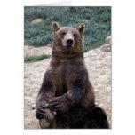 Alaska, Ursus suroriental del oso de Brown de la r Tarjetas