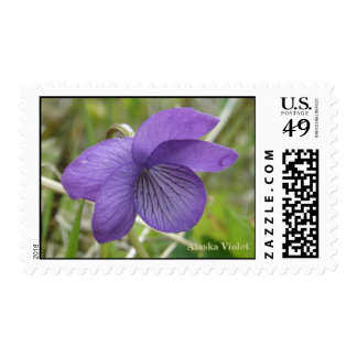 Alaska Violet (Viola langsdorffii) Stamps